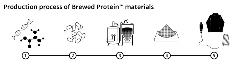 Brewed Protein Process